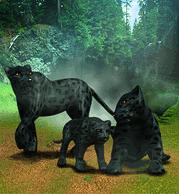 Black Leopard Plaque.png