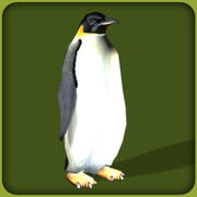 Penguin1.jpg