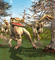 ZT1 Velociraptor AnimalFacts.png