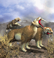 Saber Tooth Cat.png