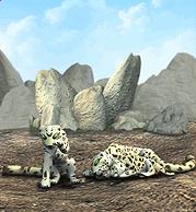 Snow Leopard Plaque.png