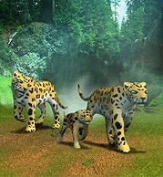 Jaguar Plaque.png