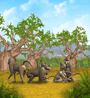 Olive Baboon.png