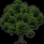 Realistic Tree (FelipeepileF)