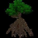 Red Mangrove (Demon Hunter)