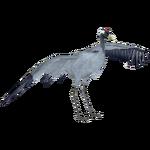 Common Crane (Andersxhd)