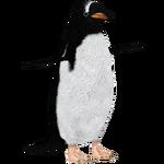 Antarctic Gentoo Penguin (Demon Hunter)