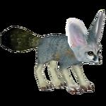 Blanford's Fox (Artifex)