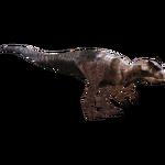 Aciedactylus (Alvin Abreu)