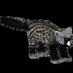 African Civet (Kangorilaphant)