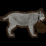 Canadian Lynx (JimmyzHoopz)