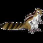 Ambient Five-lined Ground Squirrel (Tamara Henson)