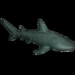 Basking Shark (SpinoSquad)