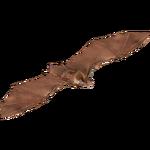 Brown Long-eared Bat (Deinonychus 110)
