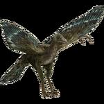 Archaeopteryx (Bunyupy)