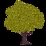 Fall Oak (Z-Studio)