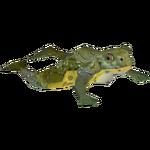 Ambient African Bullfrog (Burnt Gecko & Penguinman)