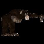 Australopithecus (Luca9108)