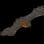 Big Brown Bat (LilyValley)