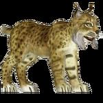 Bobcat (VGnome)