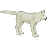 Arctic Wolf (Collar)