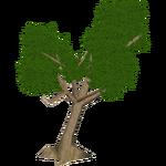 Cassava (Hispa Designs)