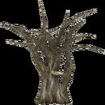 Raintree (slice)