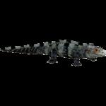 Black Spiny-tailed Iguana (Hispa Designs)