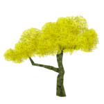 Palo Verde Tree (Fauna)