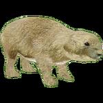 Black-tailed Prairie Dog (DutchDesigns)
