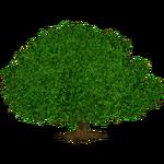 Giant Ficus (The Restorers)