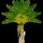 Banana Tree (Demon Hunter)