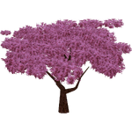 Cherry Tree (The CRG Problem)