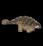 Ankylosaurus (Philly)