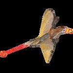 Ambient Rhamphorhynchus (Bunyupy)