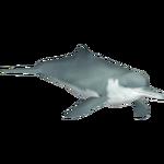 Baiji (Whalebite)/Version 1