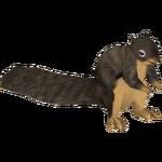 Ambient Douglas Squirrel (Gloria)