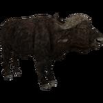 African Buffalo (Aurora Designs)