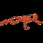 Anthony's Poison Frog (Terrena Laxamentum)