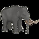 Asiatic Straight-Tusked Elephant (Elephantium Creators Realm)