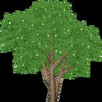 Portia Tree (Zeta-Designs)
