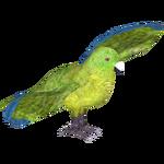 Antipodes Parakeet (MasterChief123)