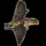 Anurognathus (16529950)