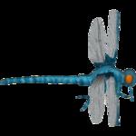 Ambient Meganeura (Andrew12)