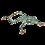 Emerald-eyed Tree Frog (Terrena Laxamentum)