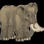African Desert Elephant (Elephantium Creators Realm)
