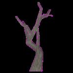 Dead Camel Thorn Tree (Z-Studio)