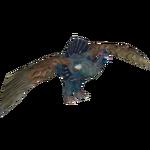 Capercaillie (Kangorilaphant)