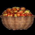 Apple Basket (Simia Negotii Team)