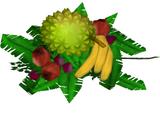 Fruits (Holden)